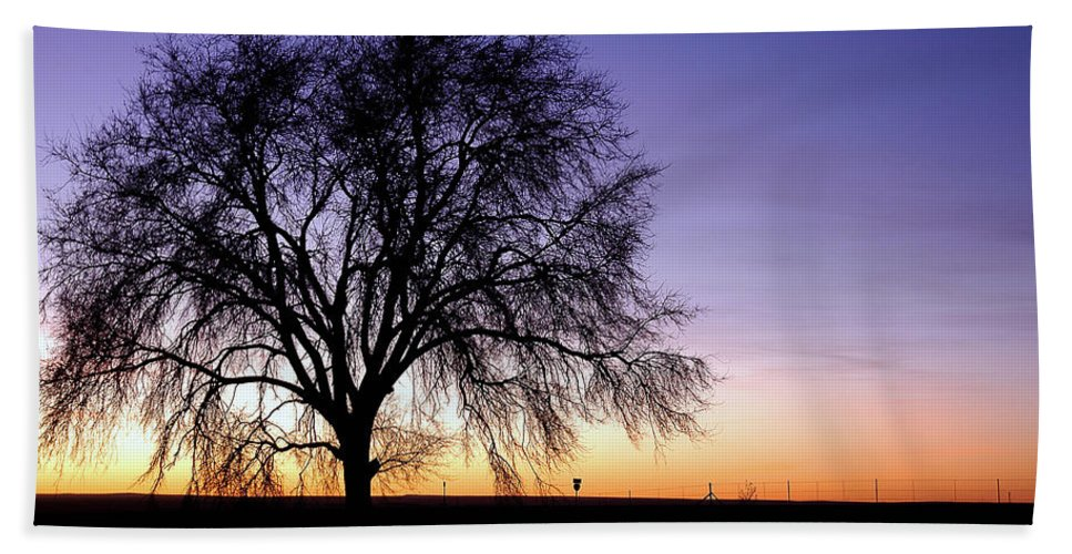 Morning Beach Towel featuring the photograph Big Sky - New Mexico by D'Arcy Evans
