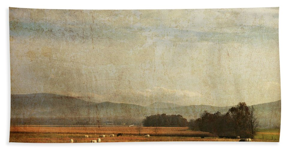 Beach Towel featuring the photograph Big Valley by Guy Crittenden