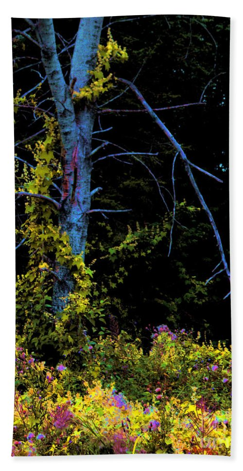 Birch Trees In Summer Beach Sheet featuring the photograph Birch And Vines by Joanne Smoley