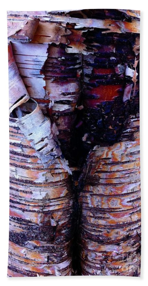 Birch Bark Closeup Beach Towel featuring the photograph Birch Bark Closeup by Barbara Griffin