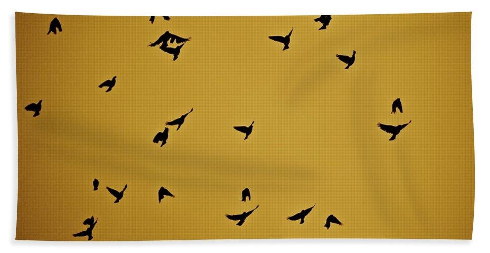 Birds Beach Towel featuring the photograph Bird Ballet by Diana Hatcher