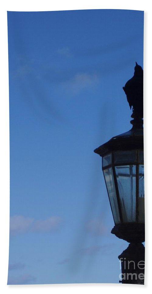 Bird Beach Towel featuring the photograph Bird On Lamplight by Deborah Crew-Johnson