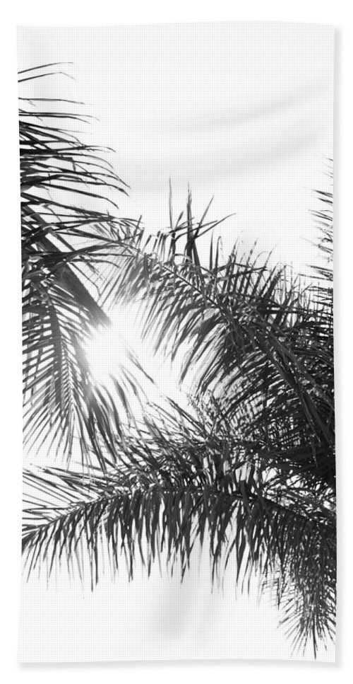 Black And White Beach Towel featuring the photograph Black And White Palm Trees by Wall Threads