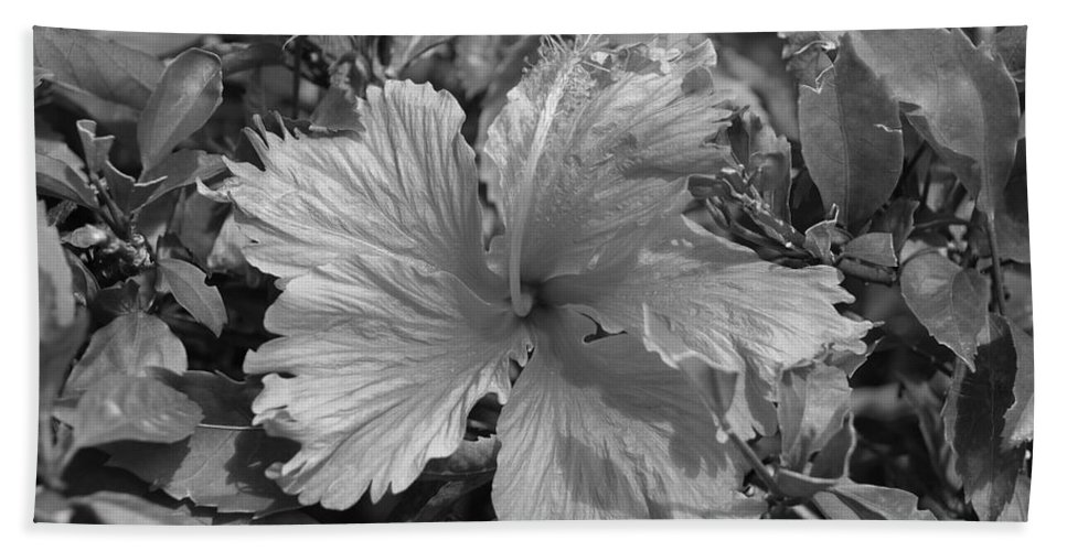 Black And White Beach Towel featuring the photograph Black And White by Rob Hans