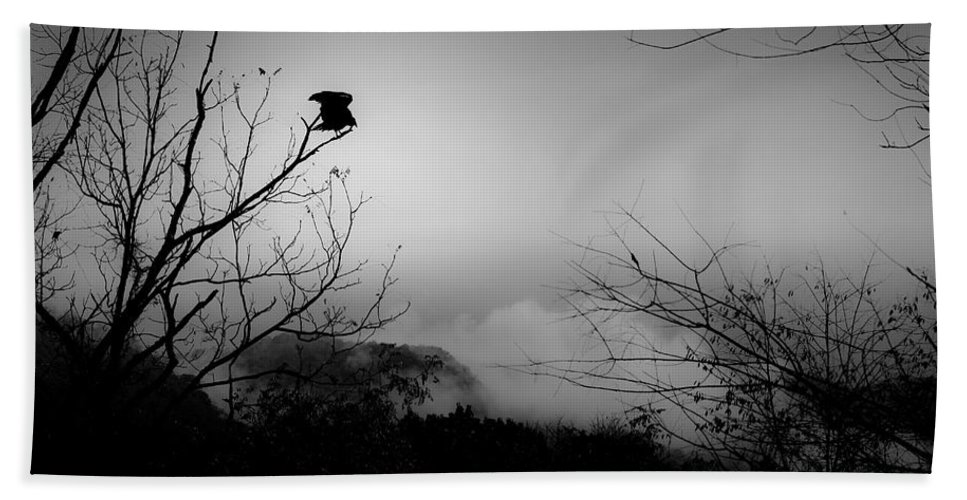Black Beach Towel featuring the photograph Black Buzzard 8 by Teresa Mucha
