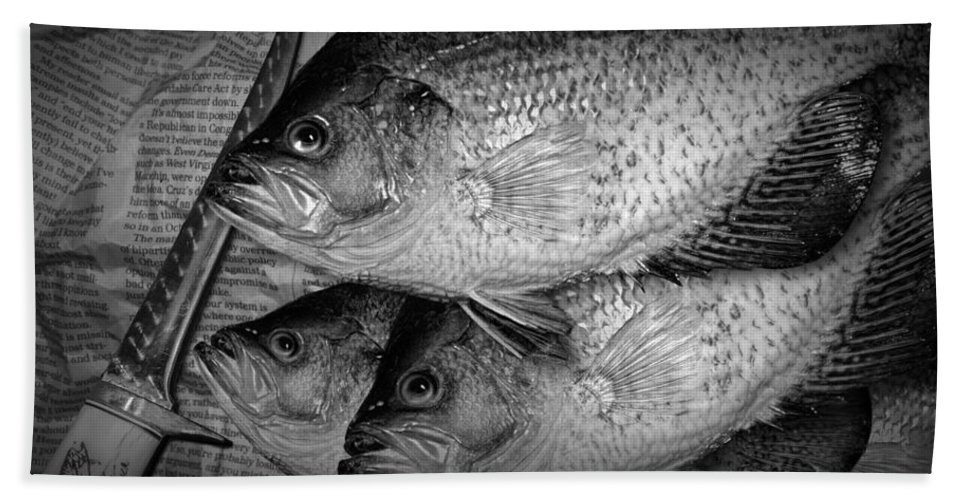 Crappie Beach Towel featuring the photograph Black Crappie Panfish With Fish Filet Knife In Black And White by Randall Nyhof