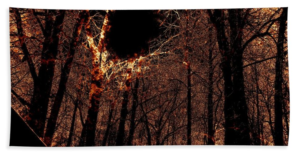 Fire Beach Towel featuring the photograph Black Hole Sun by Charleen Treasures