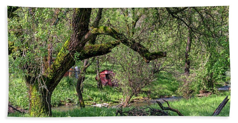 Black Oak Beach Towel featuring the photograph Black Oak And Creek by Jim Thompson
