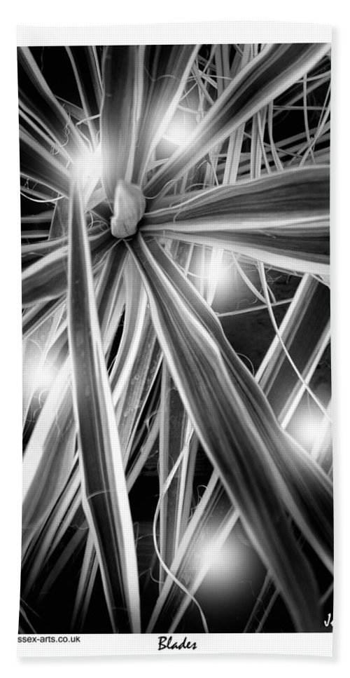 Black And White Beach Towel featuring the photograph Blades by Jules - Sussex-Arts