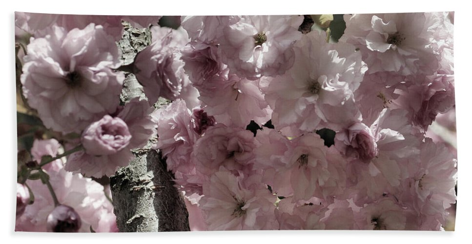 Flower Beach Towel featuring the photograph Blossoms by Smilin Eyes Treasures
