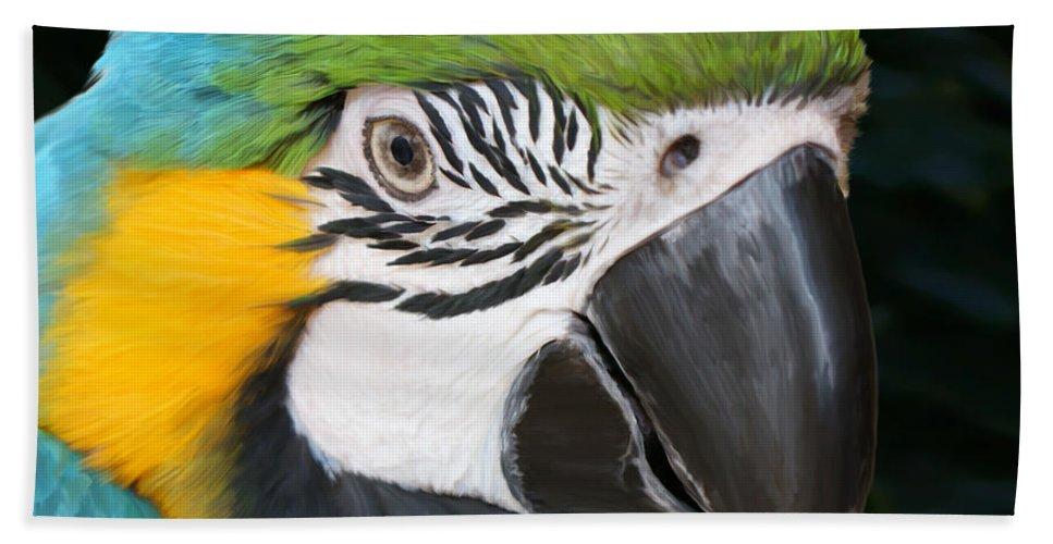 Macaw Beach Towel featuring the painting Blue And Gold Macaw Freehand Painting Square Format by Ernie Echols