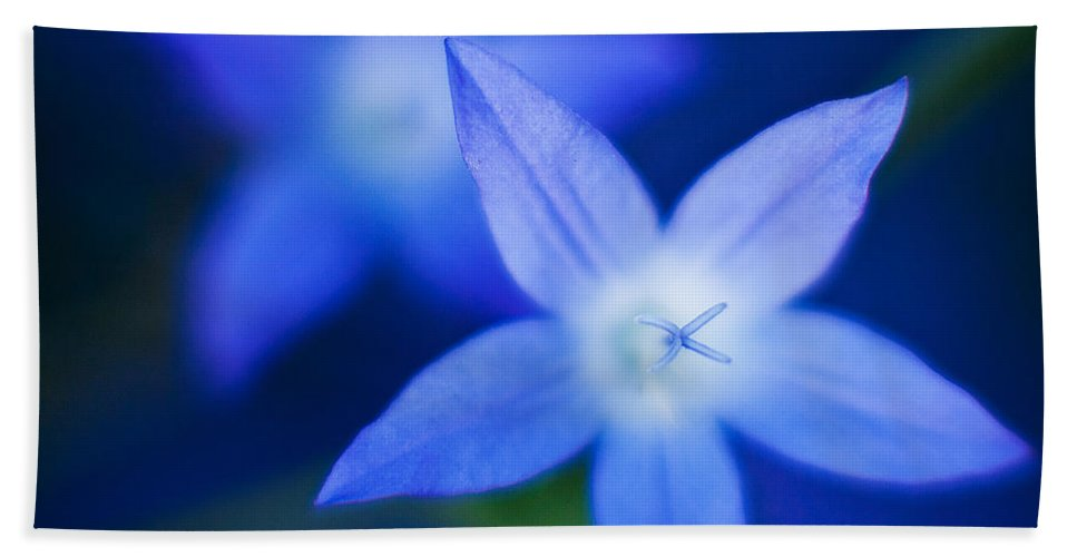 Blue Beach Towel featuring the photograph Blue Etoile by Mike Reid