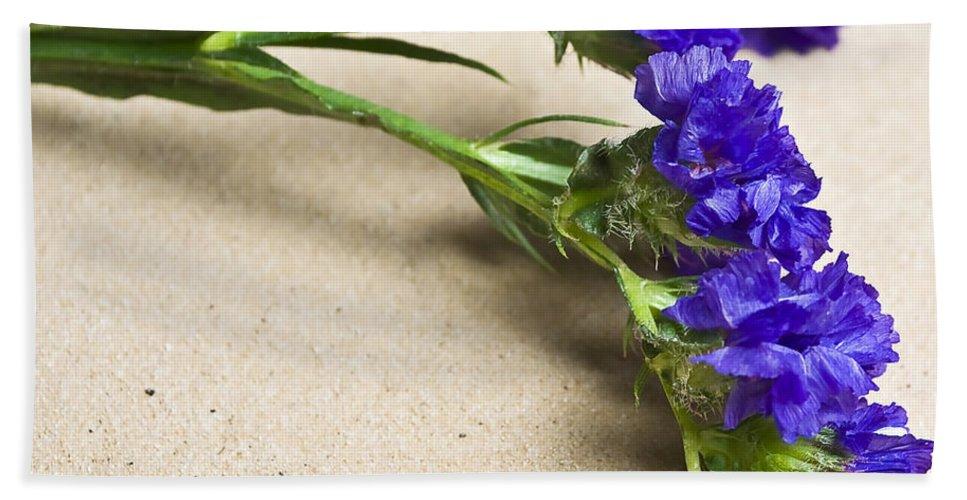 Blue Beach Towel featuring the photograph Blue Flower by Svetlana Sewell