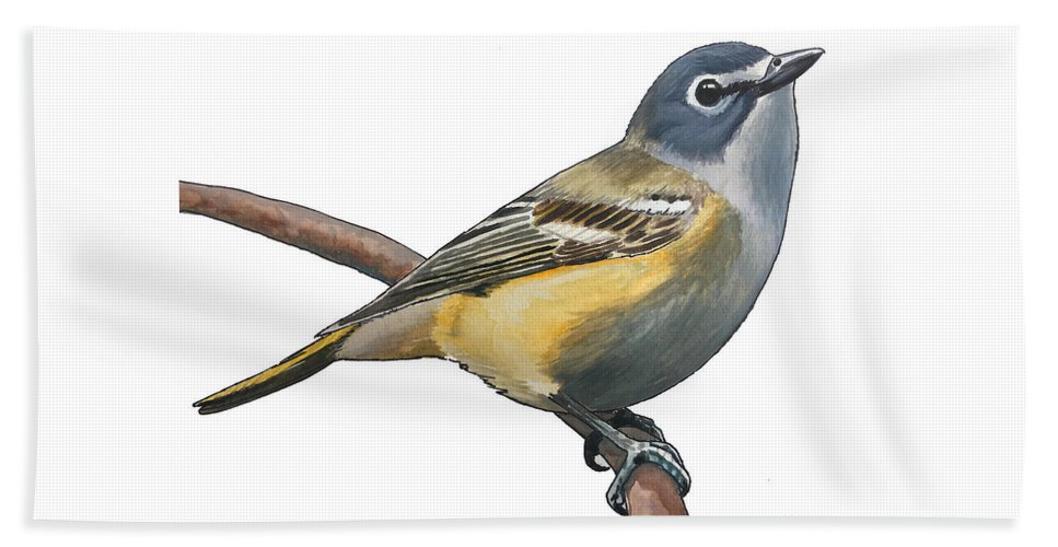 Vireo Beach Towel featuring the painting Blue-headed Vireo by Rory Viale