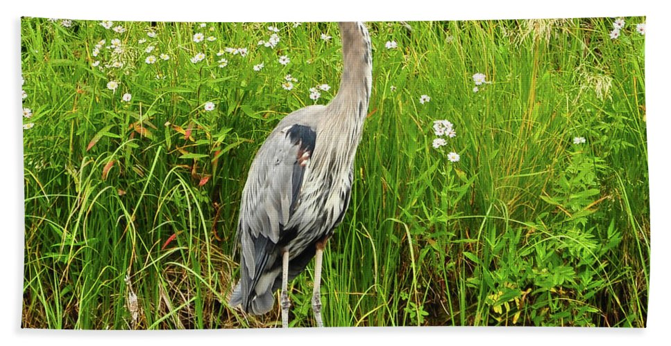 Blue Heron Beach Towel featuring the photograph Blue Heron by Greg Norrell