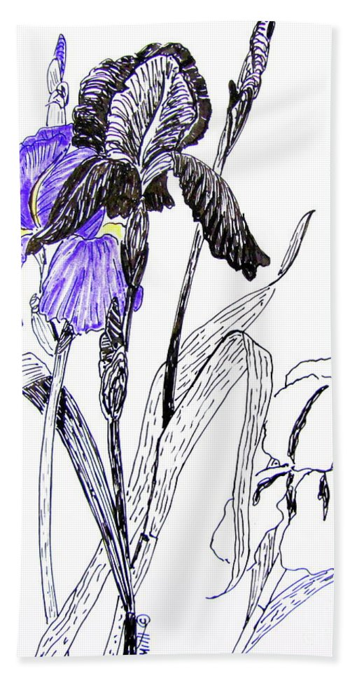 Iris Beach Towel featuring the drawing Blue Iris by Marilyn Smith