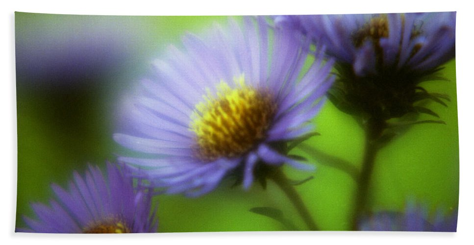 Flowers. Macrophotography Beach Towel featuring the photograph Blue On Green by Lee Santa