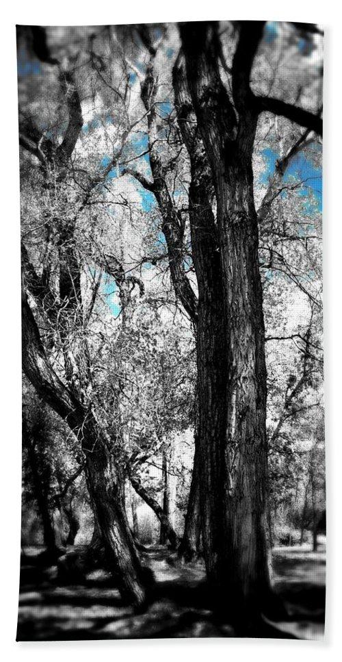 Trees Beach Towel featuring the digital art Blue Skies by Sarah Jane Thompson