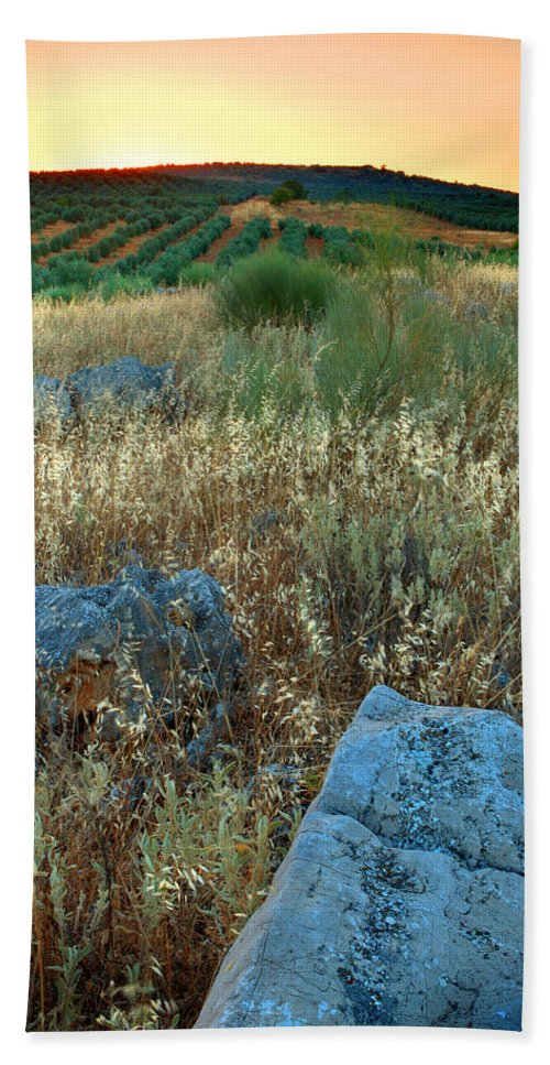 Iznajar Beach Sheet featuring the photograph blue stones amongst the olive groves near Iznajar Andalucia Spain by Mal Bray