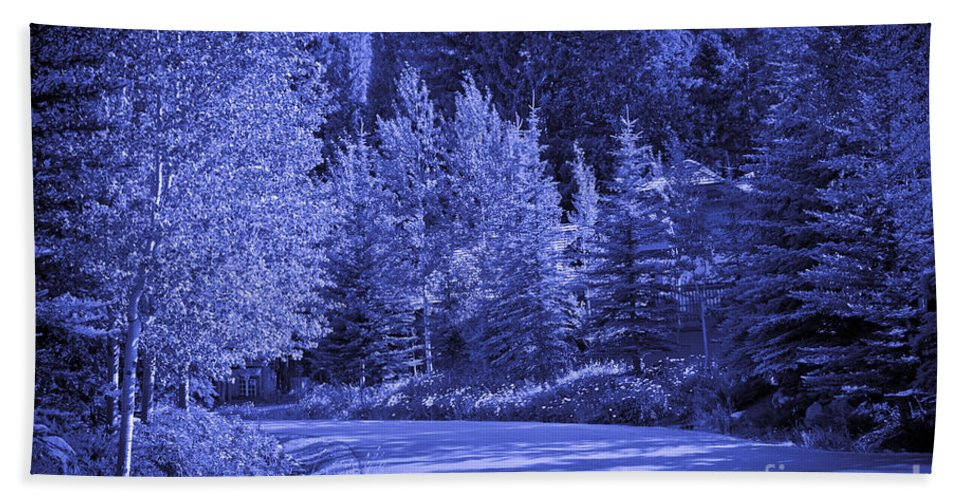 Trees Beach Towel featuring the photograph Blue Vail by Madeline Ellis