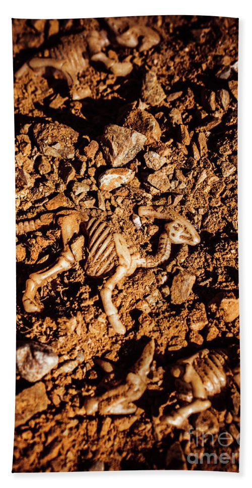 Ancient Beach Towel featuring the photograph Bones From Ancient Times by Jorgo Photography - Wall Art Gallery
