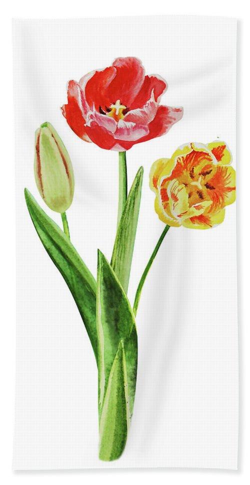 Tulip Bouquet Beach Towel featuring the painting Botanical Tulip Bouquet Watercolor by Irina Sztukowski