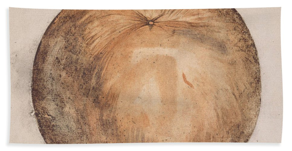1585 Beach Towel featuring the photograph Botany: Mammee, 1585 by Granger