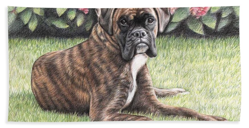 Dog Beach Towel featuring the drawing Boxer Girl by Nicole Zeug