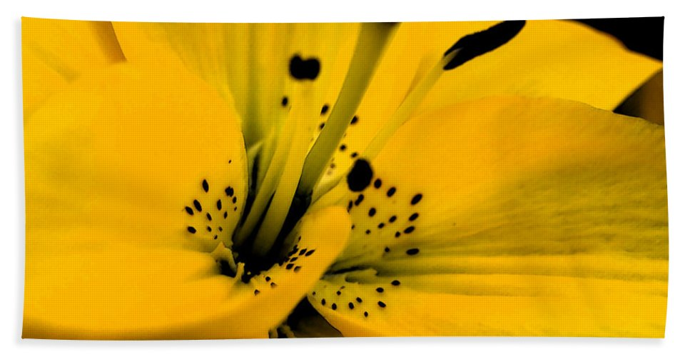 Lilly Beach Towel featuring the digital art Bright Star by Teri Schuster
