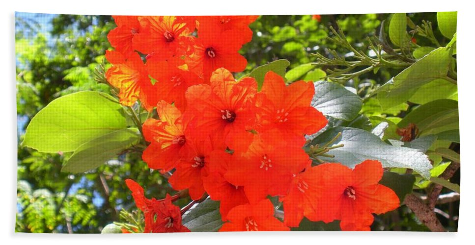 Flowers Beach Towel featuring the photograph Brilliant Blossoms by Maria Bonnier-Perez