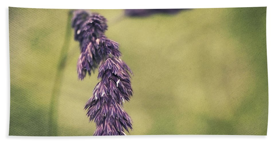 Grass Beach Towel featuring the photograph Brin D'herbe by Angela Doelling AD DESIGN Photo and PhotoArt