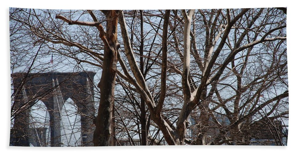 Architecture Beach Sheet featuring the photograph Brooklyn Bridge Thru The Trees by Rob Hans