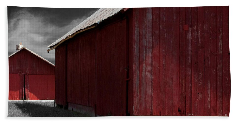 Farm Beach Towel featuring the photograph Brothers In Red by Paulette B Wright