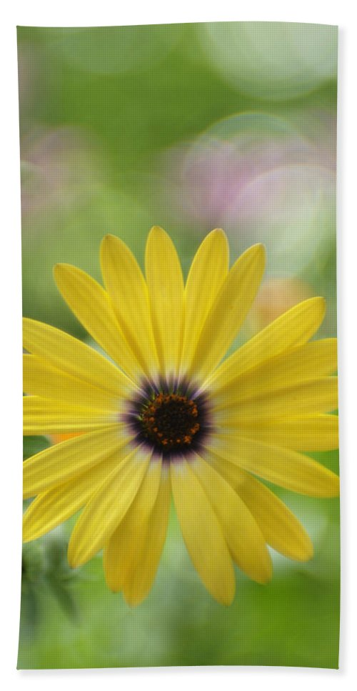 Flowers Beach Towel featuring the photograph Bubbly Lemon Symphony by Dorothy Lee