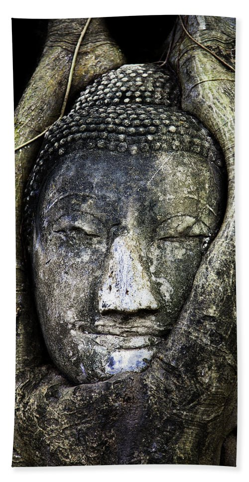 Ayutthaya Beach Towel featuring the photograph Buddha Head In Banyan Tree by Adrian Evans
