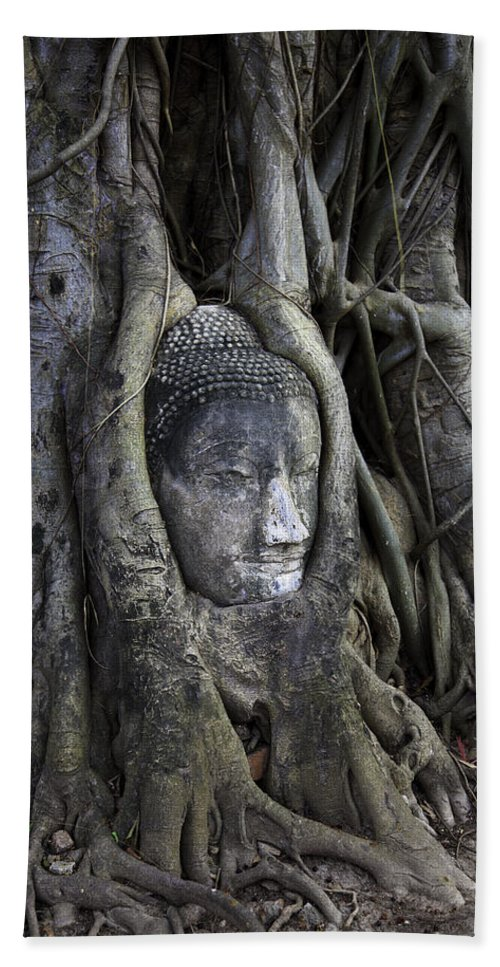 Ayutthaya Beach Towel featuring the photograph Buddha Head In Tree by Adrian Evans