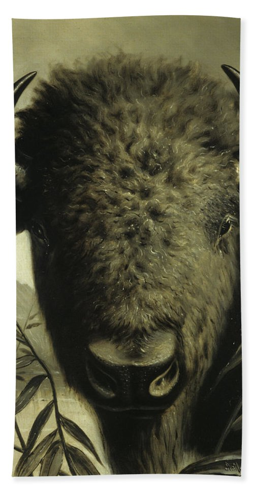 Buffalo Head Beach Towel featuring the painting Buffalo Head by Astley David Middleton Cooper