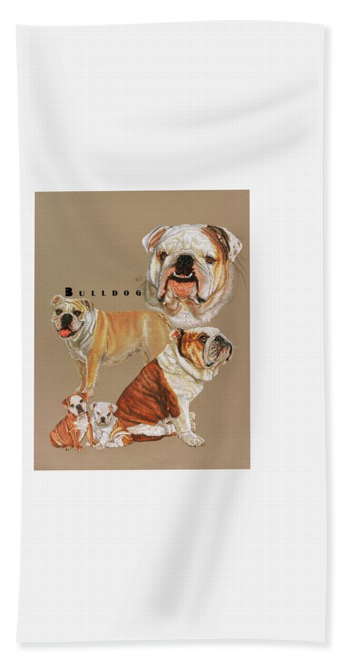 Non-sporting Beach Towel featuring the drawing Bulldog by Barbara Keith