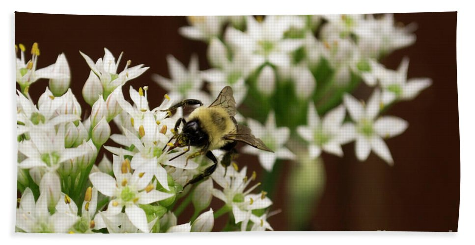 Bumble Beach Towel featuring the photograph Bumble Bee On Wild Onion Flower by Kara Kelso