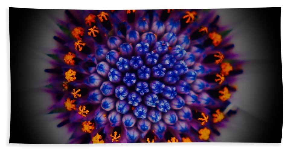 Daisy Beach Towel featuring the photograph Burst In The Center by Tim G Ross