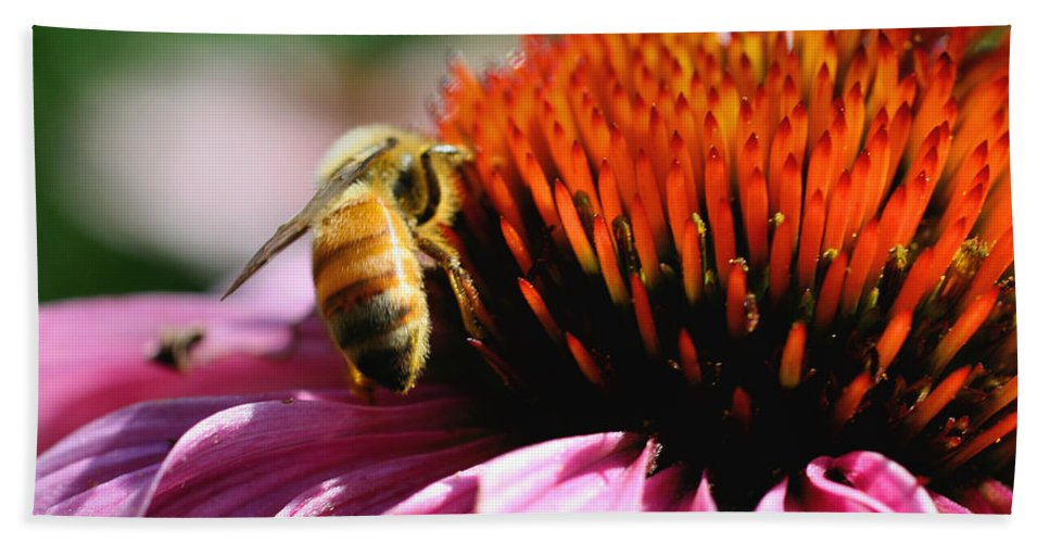 Flower Beach Towel featuring the photograph Busy Bee by Smilin Eyes Treasures