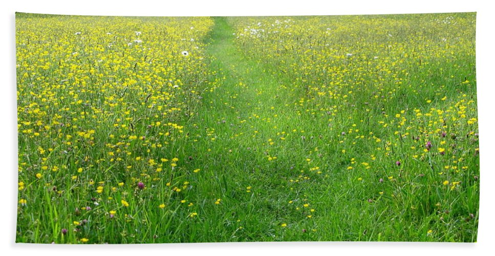 Buttercups Beach Towel featuring the photograph Buttercup Meadow by Maria Joy