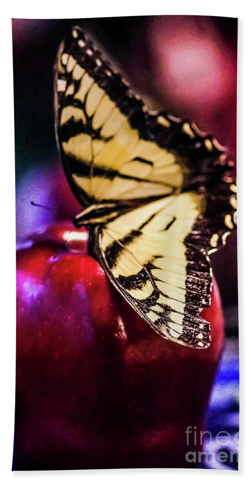 Apple Beach Towel featuring the photograph Butterfly On Apple by Gerald Kloss