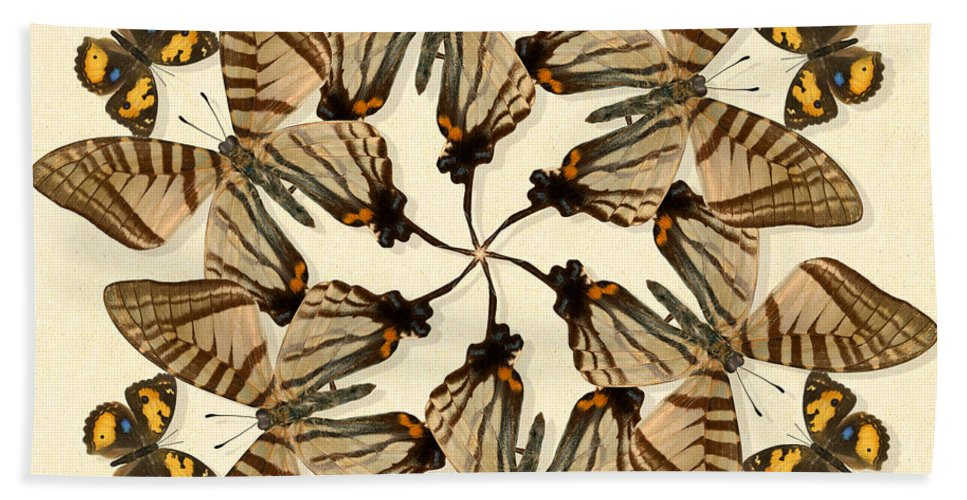 Butterfly Beach Towel featuring the photograph Butterfly Wheel Dance by Melissa A Benson