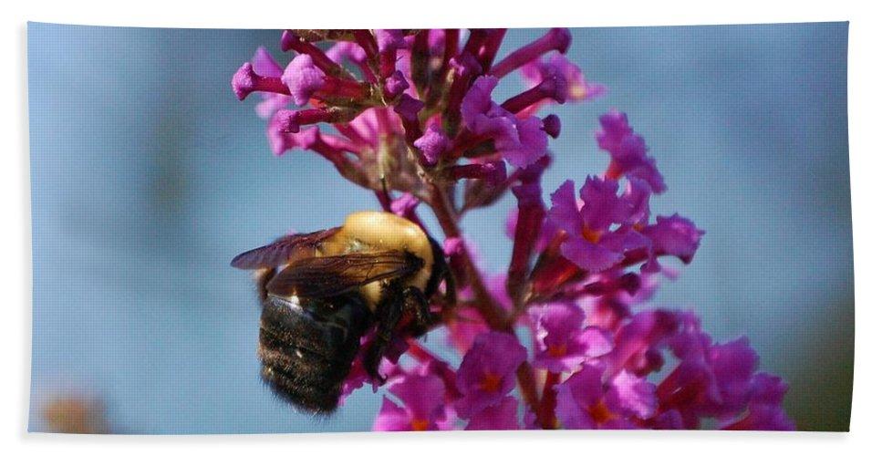 Bee Beach Sheet featuring the photograph Buzzed by Debbi Granruth