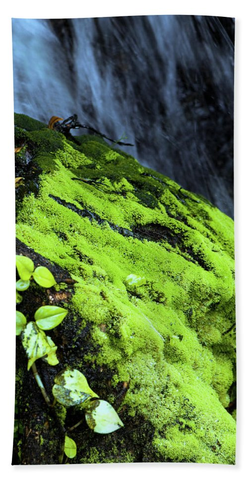Moss Beach Towel featuring the photograph By The Waterfall by Betty LaRue