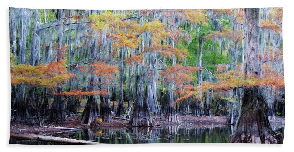 Autumn Beach Towel featuring the photograph Cabello Frances by Lana Trussell