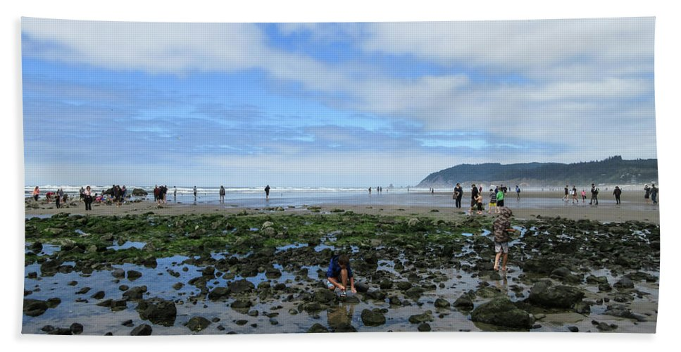 Susan Molnar Beach Towel featuring the photograph Cannon Beach Tide Pools by Susan Molnar