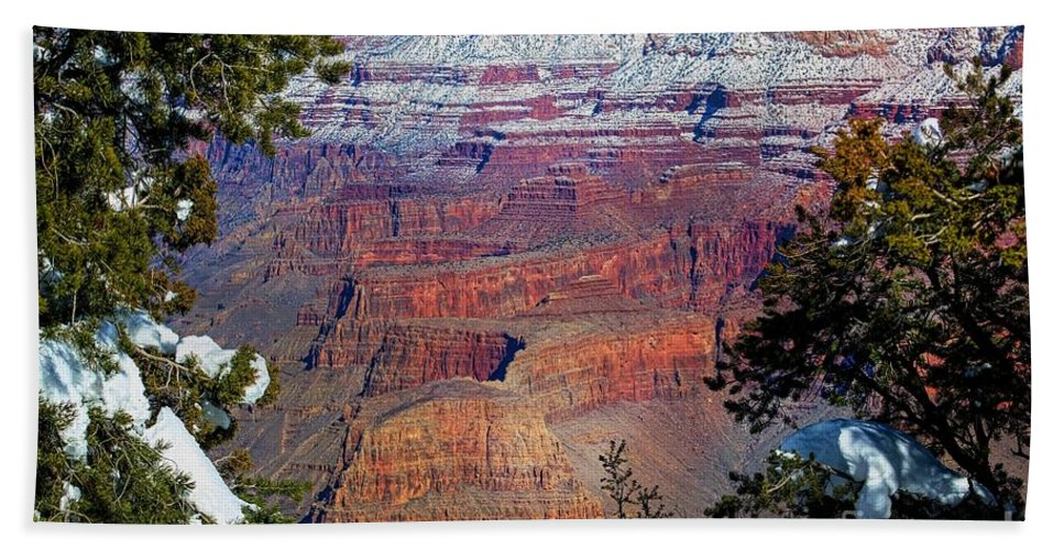 200 Views Beach Towel featuring the photograph Canyon Mystique by Jenny Revitz Soper