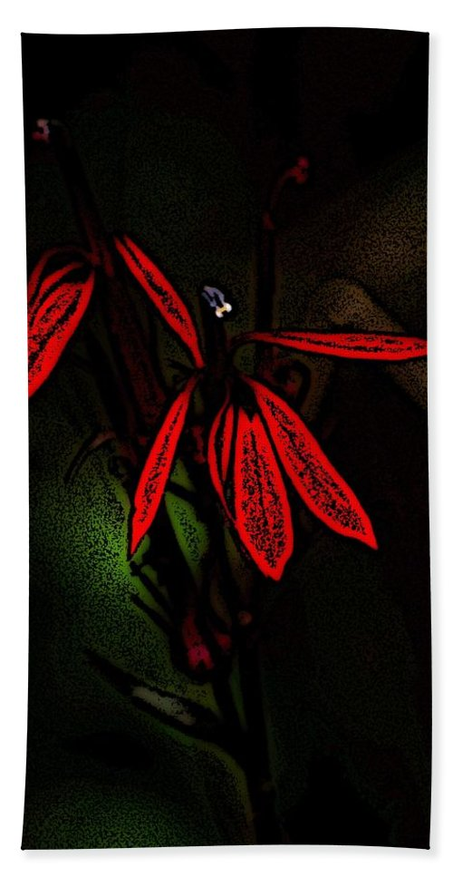 Digital Photograph Beach Towel featuring the photograph Cardinal Plant Woodcut by David Lane
